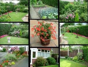 A composite image of our garden